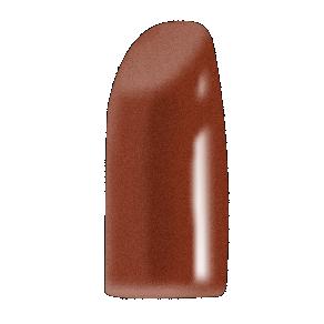Exotic Assassin lipstick brown